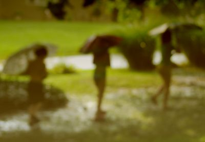 Rainparade