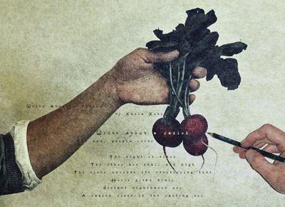 Write about a radish